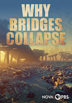 Why Bridges Collapse